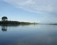 Congo_river